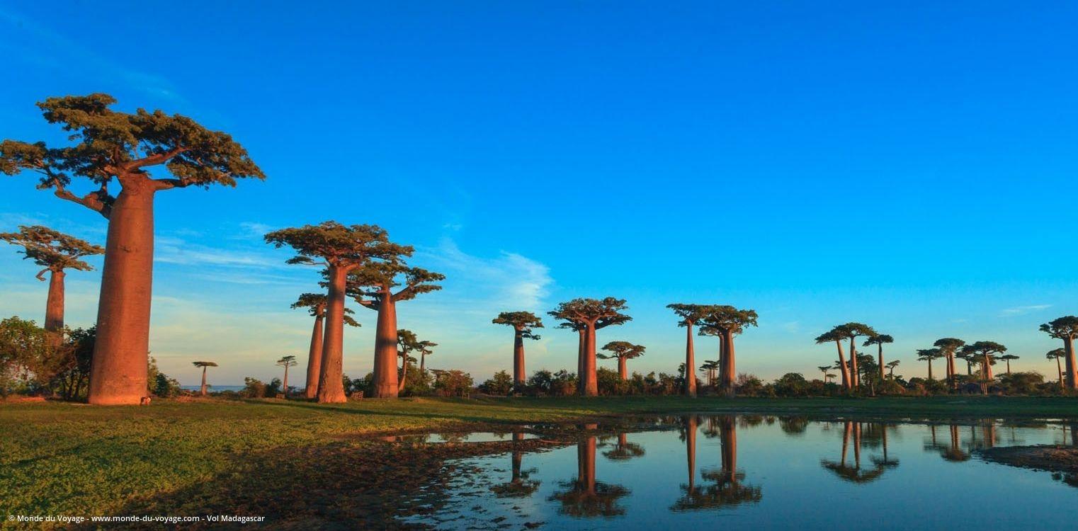 chauffeur guide à Madagascar
