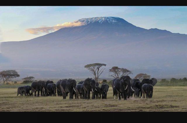 S'adonner au canyoning lors d'un séjour touristique sur le territoire kenyan